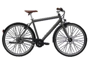 Citybikes, Trekkingbikes